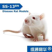 SS-13<sup>BN<sup>